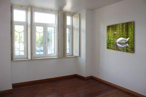 Zwaan met spiegelbeeld op de wand